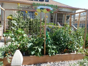 plan-ahead-vegetable-gardening-in-small-spaces